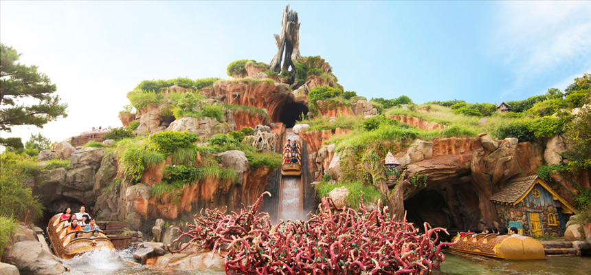 image of Splash Mountain1