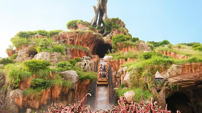 image of Splash Mountain