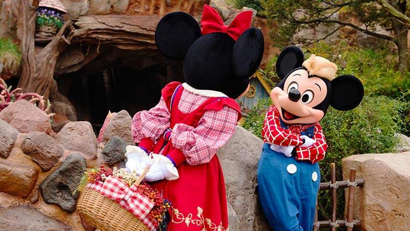 ミッキーとミニーの1日に密着♪のイメージ