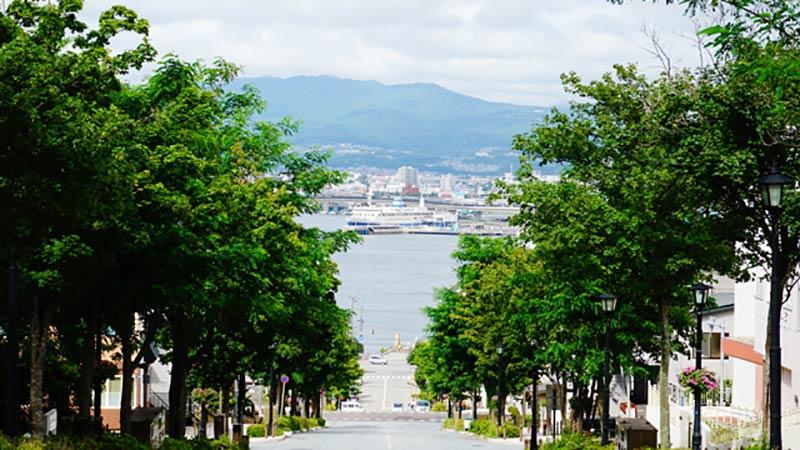 函館港まつりにディズニーの仲間たちが登場!のイメージ
