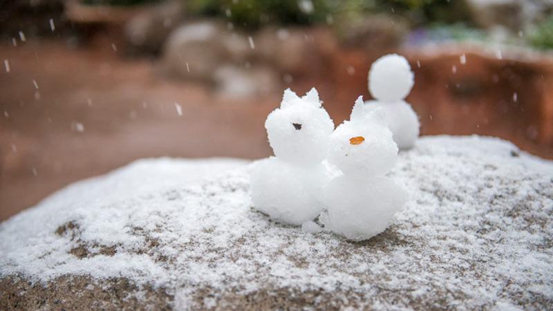 東京ディズニーリゾートの雪景色をお届け♪のイメージ