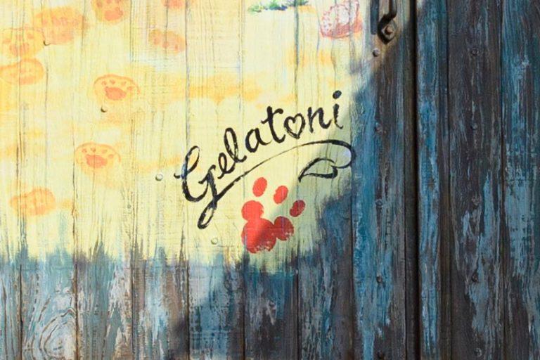 ジェラトーニのサインの画像