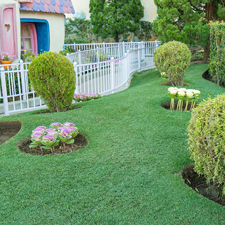 花と緑の散策のイメージ