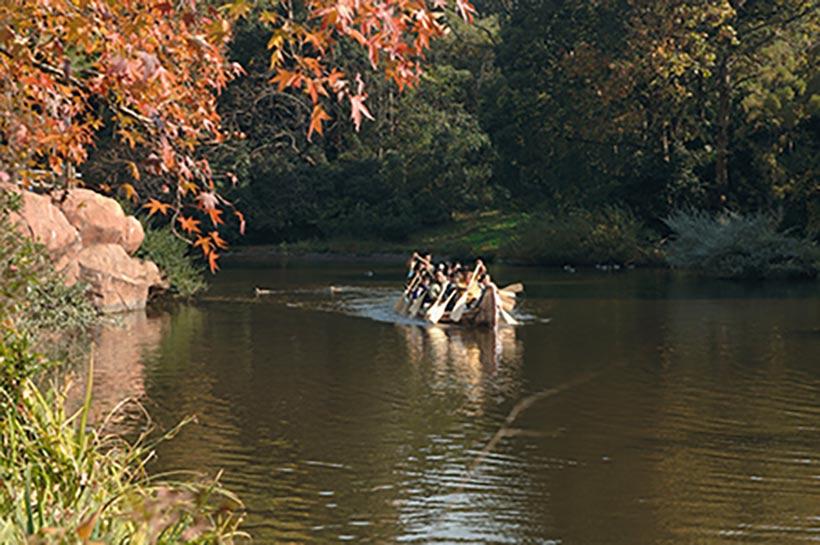 「ビーバーブラザーズのカヌー探険」でカヌーをこいでいる画像