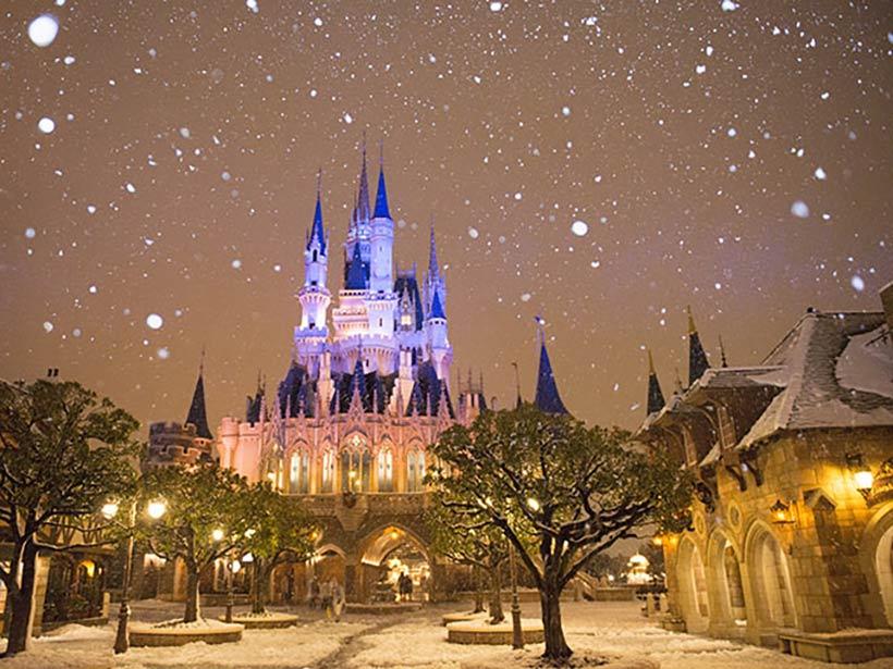 雪景色となったパークの画像