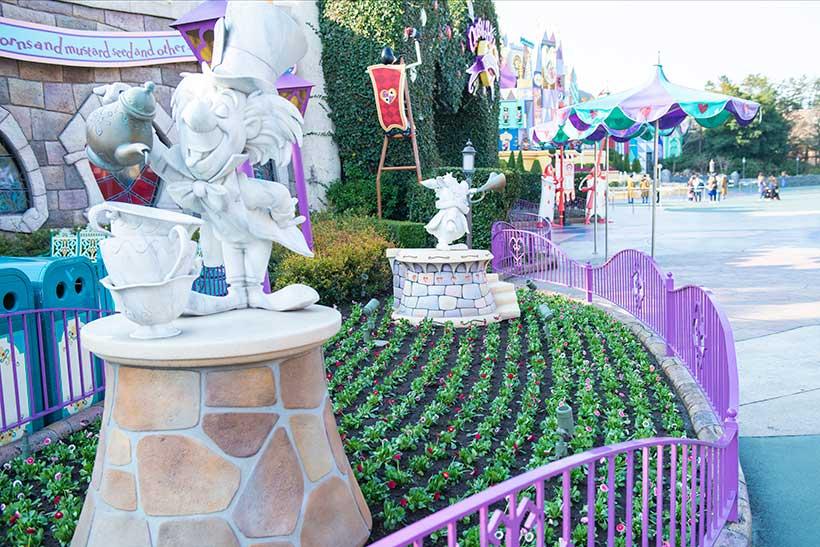花と緑の散策,東京ディズニーランド,花,癒し,緑,はな,みどり,東京ディズニーリゾート,植物,お散歩,リビングストンデージー