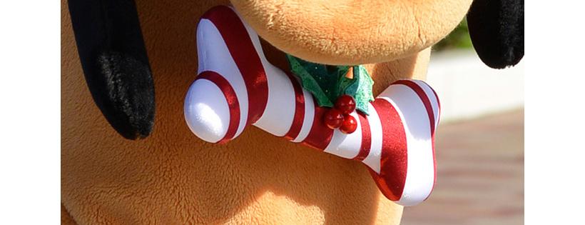 クリスマスカラーの骨の飾り