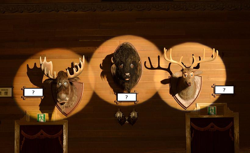 3匹の動物のキャラクターの画像