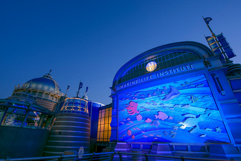 ニモ&フレンズ・シーライダーのライトアップの画像