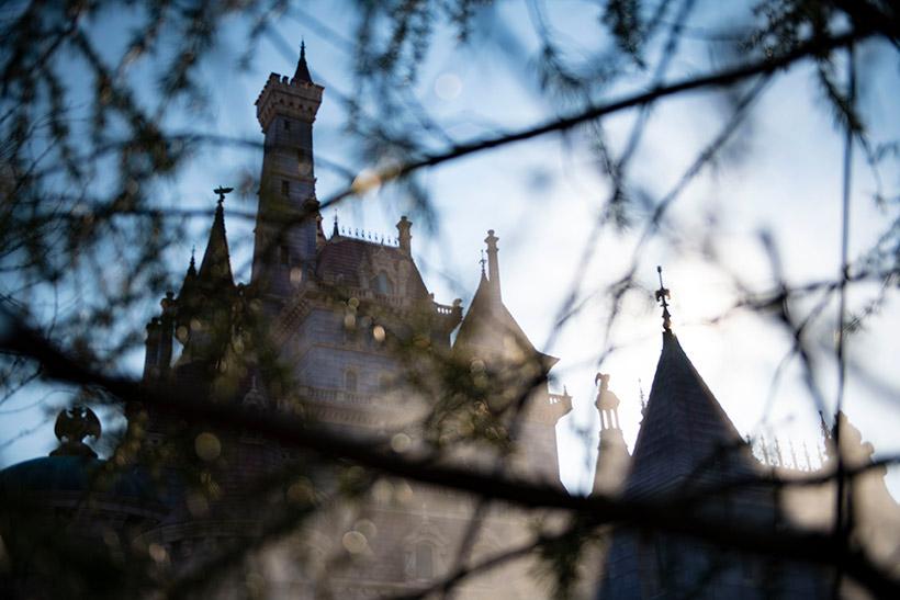 野獣の城の画像