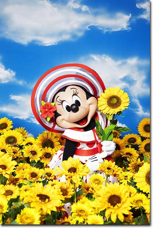 ドット柄のコスチュームを身にまとったミニーの画像3