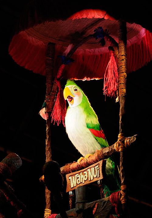 カラフルな鳥たちの画像