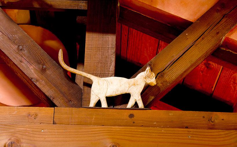 柱の上にいるネコ