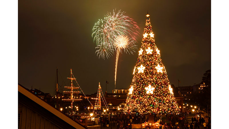煙火表演「星彩聖誕」的圖像1
