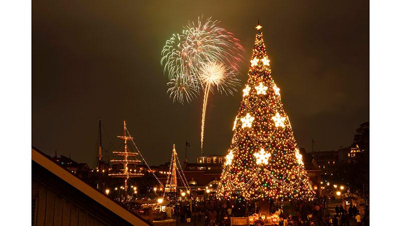星彩圣诞(焰火表演)的图像1