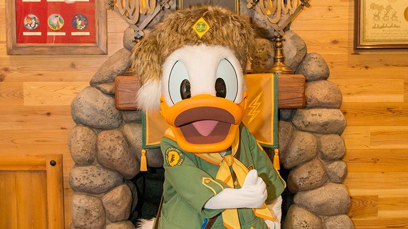 gambar Woodchuck Greeting Trail (Donald)