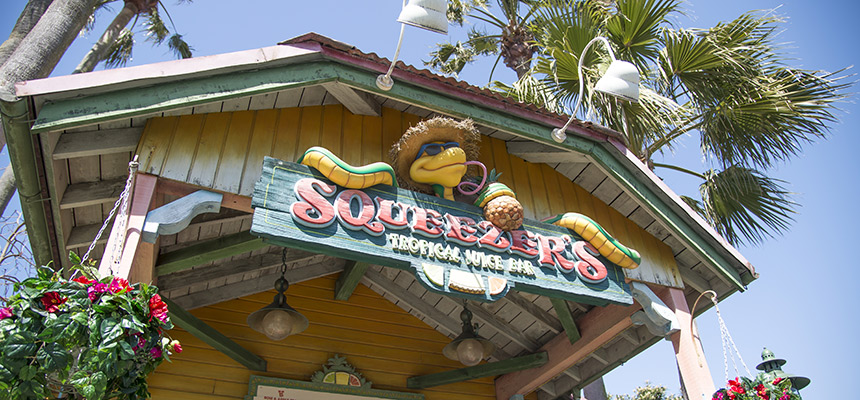 image of Squeezer's Tropical Juice Bar1