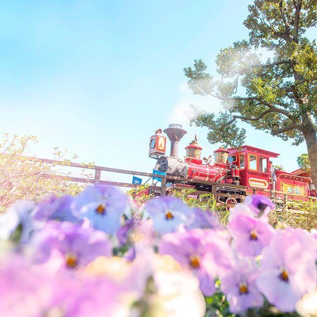 Adventure under the blue sky.どんな景色が見えるかな?#westernriverrailroad #adventureland...的圖像