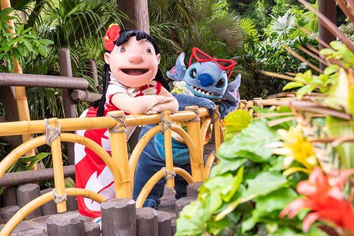 【6月21日はスティッチのスクリーンデビューの日♪】そんな今日は、スティッチとリロが東京ディズニーランドをお散歩する様子をお届けします♪仲良くお花を眺めたり、ポーズとったり…...のイメージ