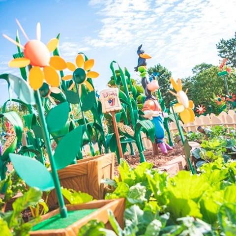Goofy's garden is just so goofy! ポップコーンも収穫できちゃう!? #goofysgarden...のイメージ