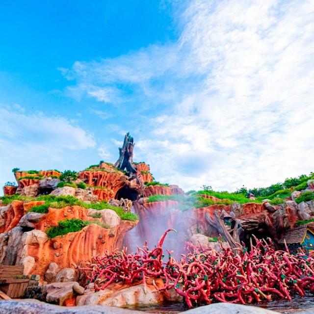 A thrilling trip awaits you! いばらの茂みへまっさかさま! #splashmountain #crittercountry...のイメージ