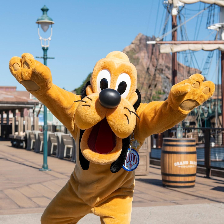 Congratulations on Pluto's screen debut! プルート、スクリーンデビューおめでとう! #pluto #screendebut...的圖像