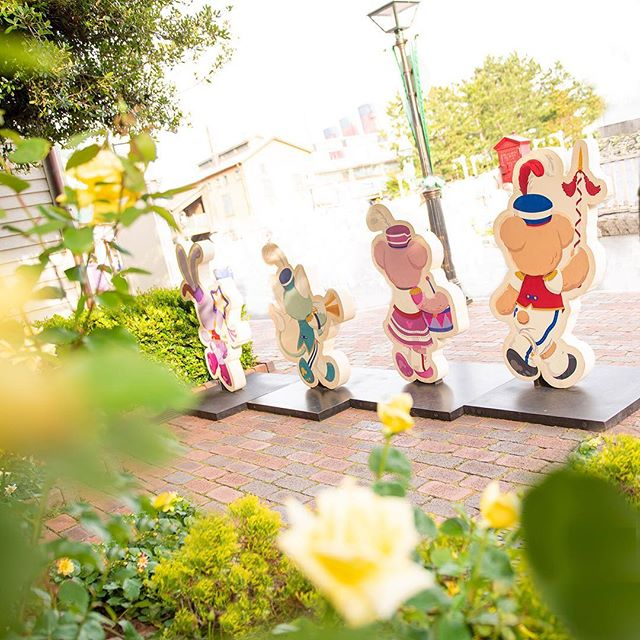 ภาพ Do you want to join Duffy's marching band?草花の陰からのぞいてみたら・・・♪#duffy #shelliemay #gelatoni...