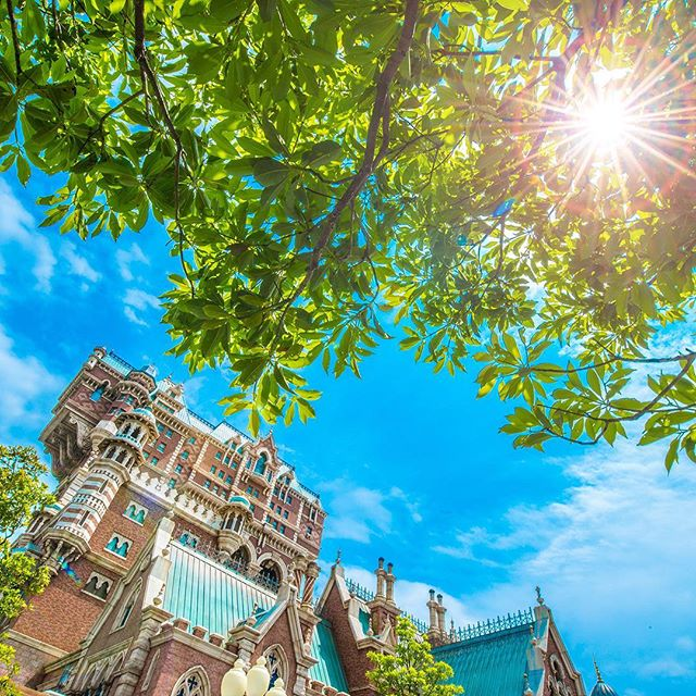 image of What are your plans for summer?この夏はなにして遊ぶ⁉︎ #towerofterror #americanwaterfront...