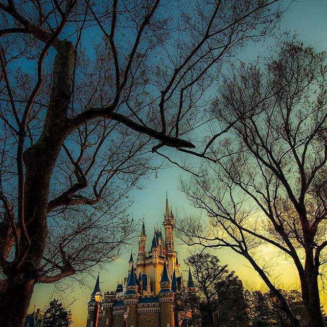 image of What kind of evening is waiting for you?舞踏会がはじまりそうな予感…。#cinderellacastle...