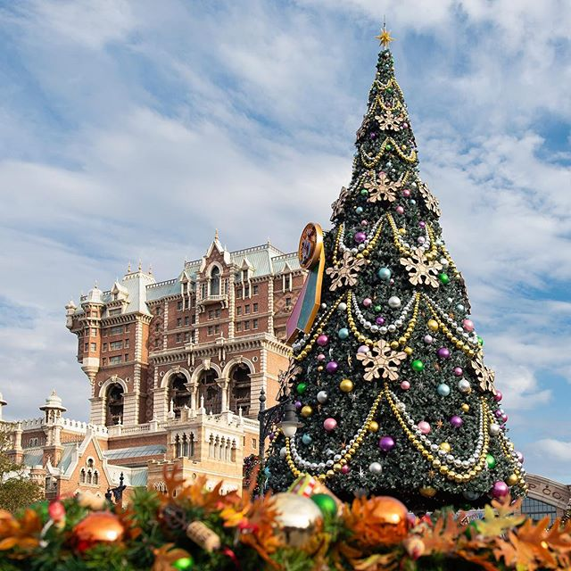 image of Can't wait for the holiday season!待ちに待ったディズニークリスマスのはじまり#disneychristmas...
