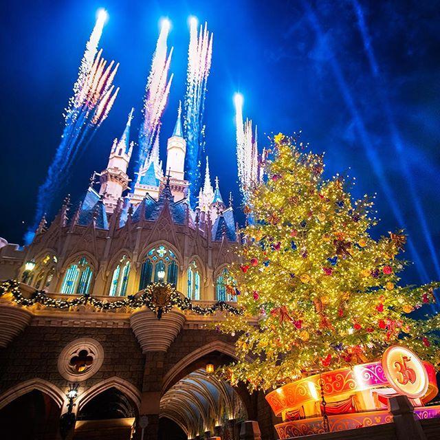 ภาพ Sparkling Christmas tree.35周年はクリスマスツリーも特別✨#disneychristmas #cinderellacastle...