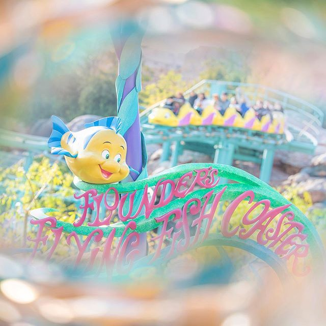 Let's zoom around the lagoon!水の中を泳いでるみたい!#floundersflyingfishcoaster #mermaidlagoon... 이미지