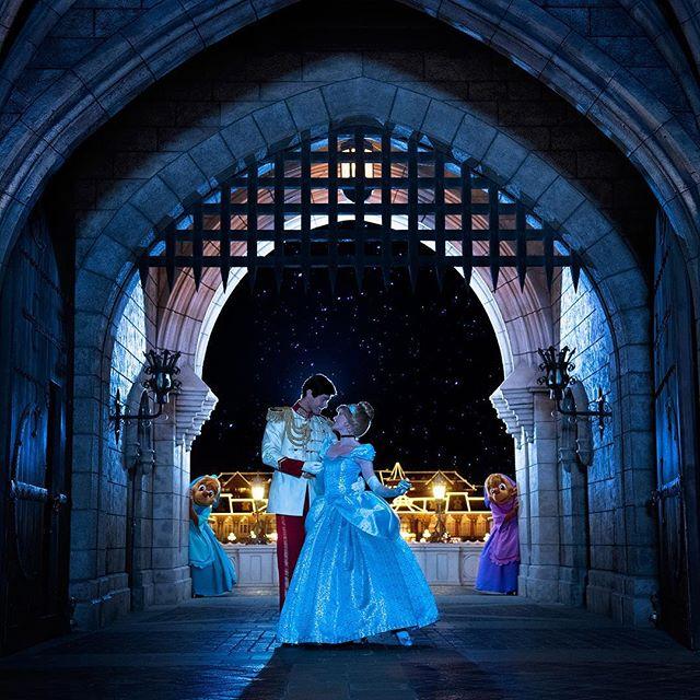 ภาพ Happy Valentine's Day!ハッピーバレンタイン❤️#cinderella #princecharming #suzy #perla...