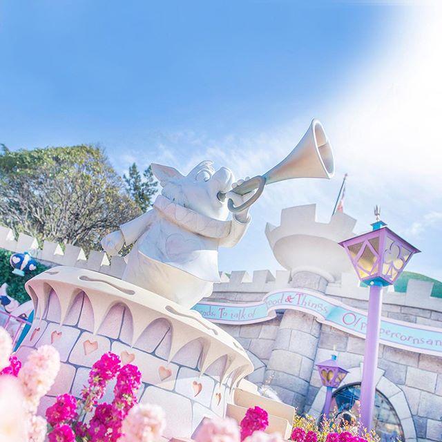 Full of wonder!高らかに鳴り響く~#queenofheartsbanquethall #fantasyland...のイメージ