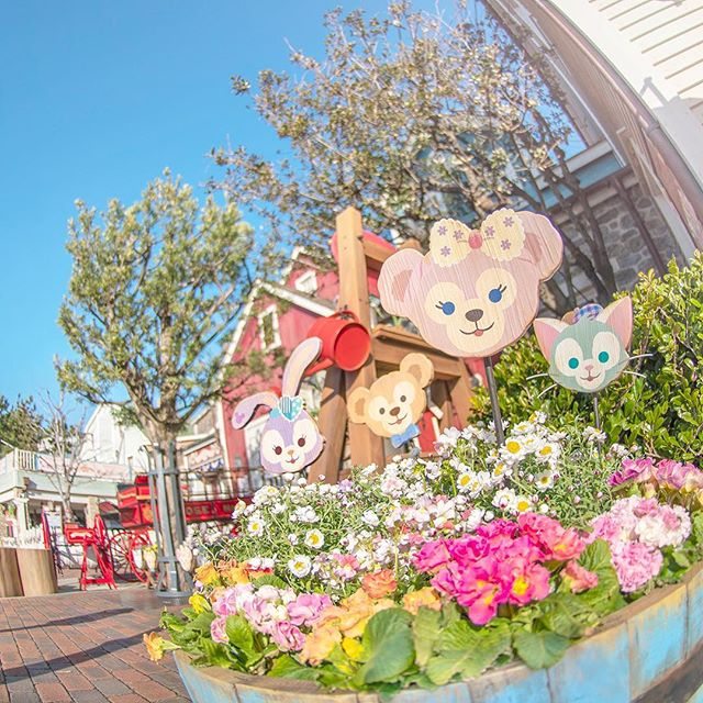 image of Time to enjoy a spring walk.ほっこり~♪#duffy #shelliemay #gelatoni #stellalou #capecod...