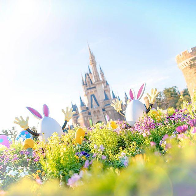 ภาพ Are you ready for some wacky springtime fun!?さぁ、春を楽しもう! #disneyseaster #usatama...