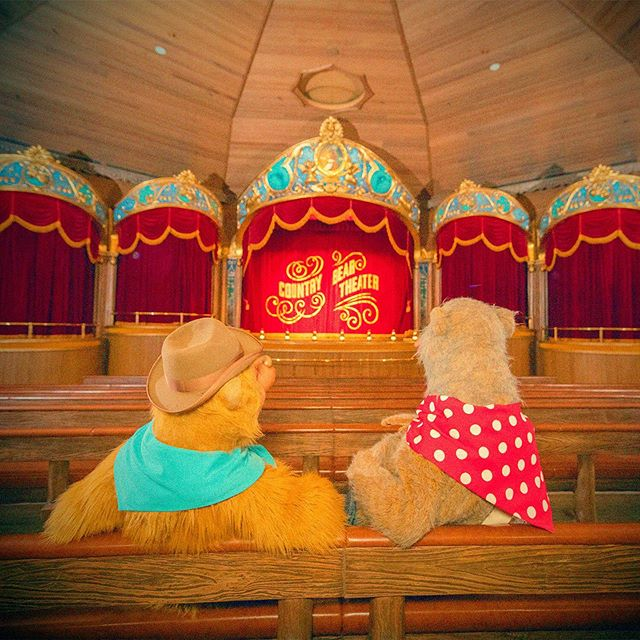 Are you ready for the show?もうすぐショーが始まるよ~!#countrybeartheater #westernland...のイメージ