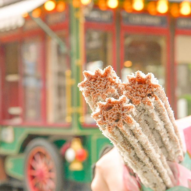 Who loves churros!?この季節だけのお楽しみ♡#parksidewagon #adventureland #tokyodisneyland...のイメージ