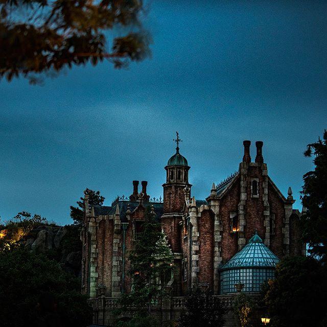 ภาพ Dare to visit?肝だめしはいかがでしょう…#hauntedmansion #fantasyland #tokyodisneyland...