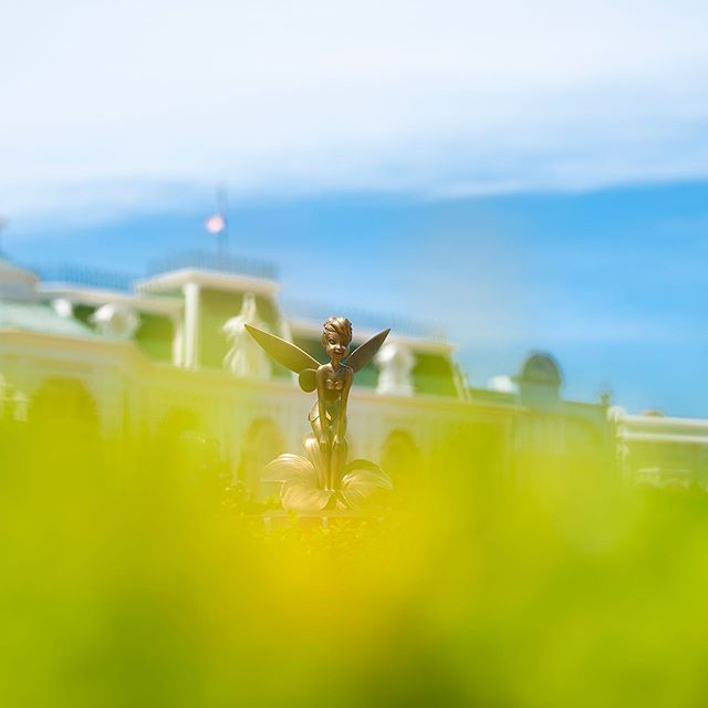image of Who wants to go to Never Land?あなたを見つめていたのは…✨#worldbazaar #tokyodisneyland...
