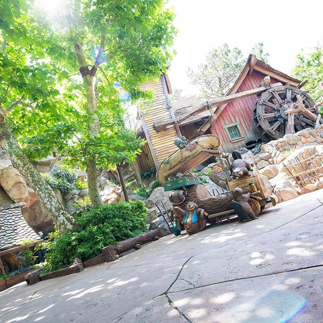 image of Good day for a critter adventure.木陰で休憩中…#crittercountry #tokyodisneyland...