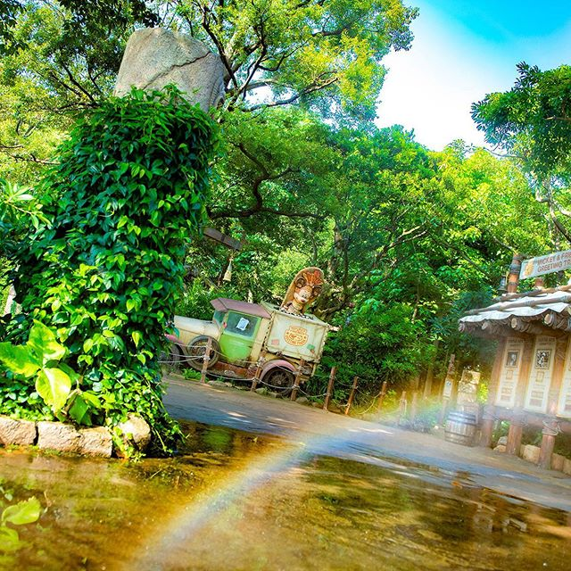 Find a colorful rainbow!虹の先でだれに会えるかな?#mickeyandfriendsgreetingtrails #lostriverdelta...のイメージ