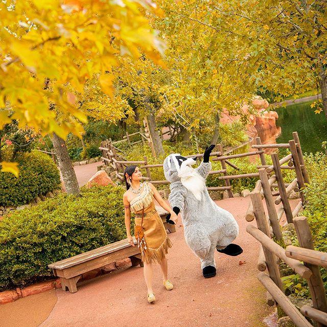 image of Find something fun?すてきなもの、見つけたのかな?#pocahontas #meeko #tokyodisneyland...