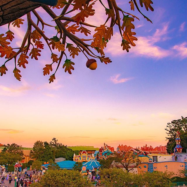 image of Autumn has arrived.秋空のグラデーション✨#chipndalestreehouse #toontown #tokyodisneyland...