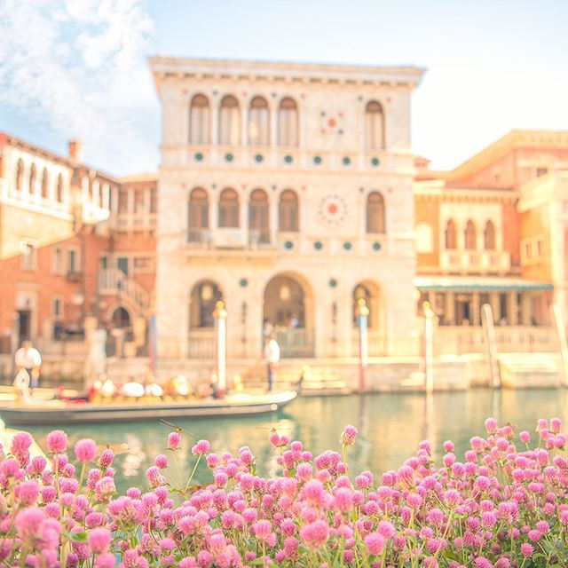 Sunshine on an autumn day.さわやかな秋晴れ☆#venetiangondolas #mediterraneanharbor...的图像