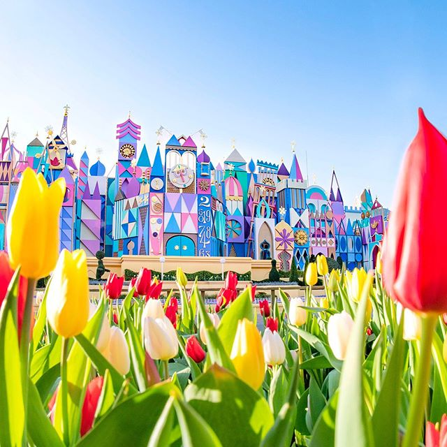 image of Fantasyland is colored with beautiful tulips!ファンタジーランドから春をお届け✨#itsasmallworld...
