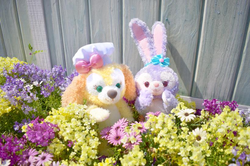 きれいなお花畑を探険中♪クッキー・アンがなにかを発見したみたい! https://t.co/OwOccWNelEのイメージ