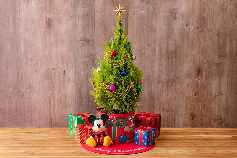 おうちでのクリスマスを彩る、東京ディズニーリゾート限定の特別な生木のツリーセットが登場します! 楽しく飾りつけて、すてきなクリスマスのひとときを過ごしてくださいね♪ >>...のイメージ
